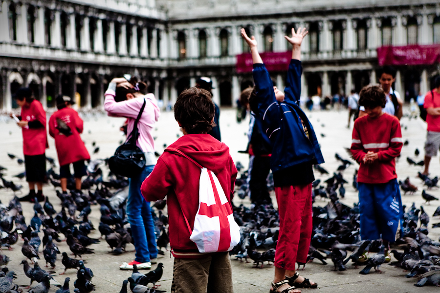 Venice - Boys playing with pigeons in St. Mark's square, color photo