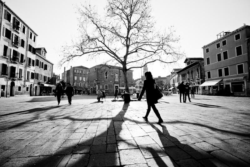 Venice - big tree in Campo S. Margherita, black and white landscape photo