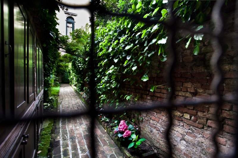 Venice - garden in bloom in sestiere of S. Croce, color landscape photo